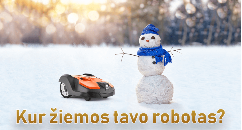 Robotas vejapjove - ką daryti žiemą?